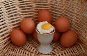 eggs-750847_640